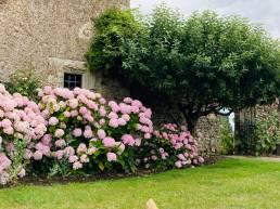 Tudor Wing Garden